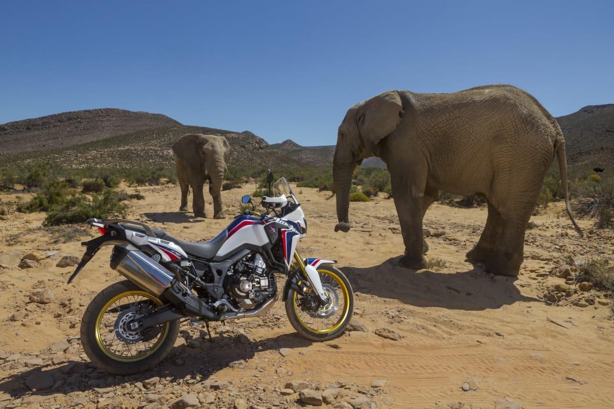 Honda_CRF1000L_AfricaTwin_YM16_1126B